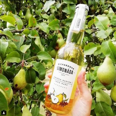 Richardova limonáda - instagram foto 8